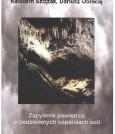 Zapylenie powietrza w podziemnych kopalniach soli - (nakład wyczerpany)